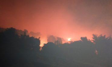 Μεγάλη φωτιά στη Νέα Μάκρη. Ενισχύονται οι δυνάμεις της Πυροσβεστικής