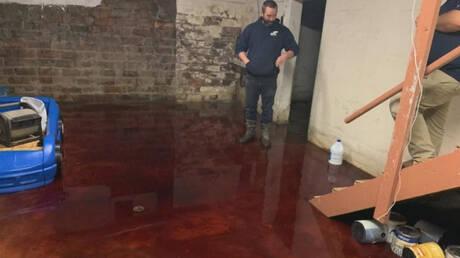 Σκηνή από ταινία τρόμου: Κατέβηκαν στο υπόγειό τους και το βρήκαν πλημμυρισμένο με… αίμα (pics&vid)