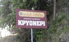 Τραγωδία στην Αρχαία Ολυμπία: Αυτοκτόνησε 51χρονος με μονόκαννο