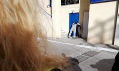 Μετανάστης σε αμόκ επιτέθηκε σε δημοτική καθαρίστρια, ασέλγησε & την ξυλοκόπησε μπροστά στον κόσμο