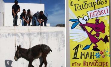 Εισαγγελέας Νάξου: Βαριά πρόστιμα για όσους τηρήσουν το «έθιμο» και ανεβάσουν γαϊδούρια στις ταράτσες