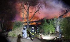Γερμανία: Νεκρές δεκάδες μαϊμούδες έπειτα από πυρκαγιά σε ζωολογικό κήπο