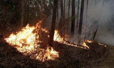 Αυστραλία: Συνετρίβη το πυροσβεστικό αεροσκάφος – Τρεις νεκροί