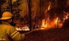 Αυστραλία: Ένας ακόμη πυροσβέστης νεκρός από τις πυρκαγιές