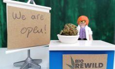 Biorewild: Κίνητρό μας η επιθυμία μας για βοήθεια
