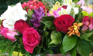 Τα λουλούδια σας χτυπούν την πόρτα του σπιτιού σας. Το Πυθάρι στη Νέα Ερυθραία.