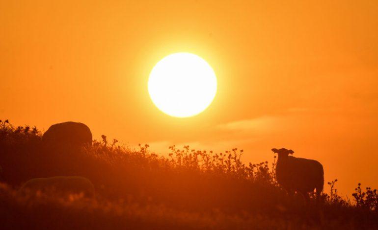 Solar Minimum: Ο πλανήτης Γη μπαίνει σε μια νέα (πολύ χειρότερη) φάση του… Γράφει ο Ησαΐας Κωνσταντινίδης