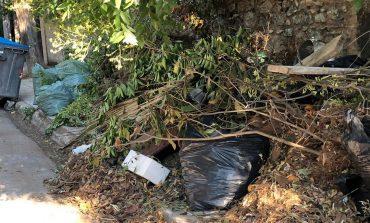 Απέτυχε το πρόγραμμα ΜΕ ΡΑΝΤΕΒΟΥ για την αποκομιδή κηπαίων του Δήμου Κηφισιάς.