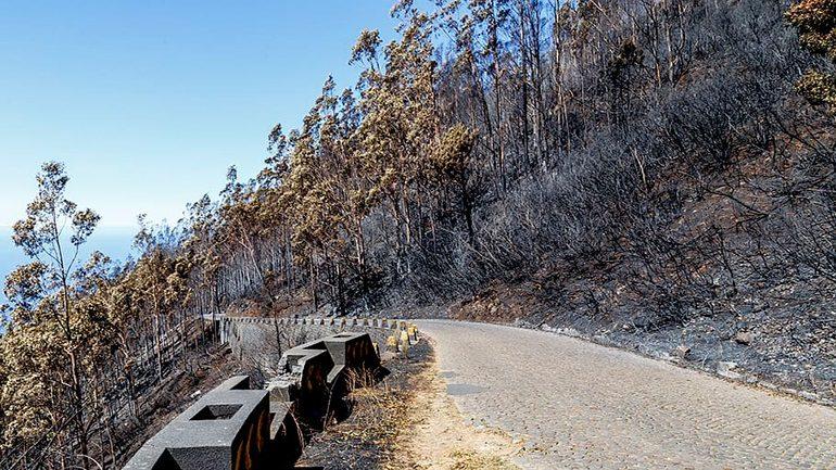 Πορτογαλία: Πυροσβέστης σκοτώθηκε σε τροχαίο κατά την επιχείρηση κατάσβεσης δασικής πυρκαγιάς
