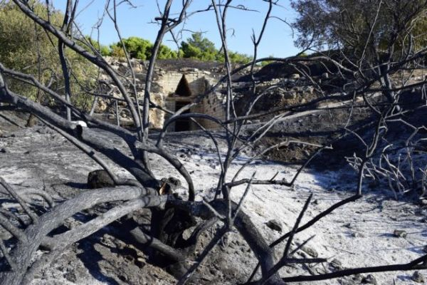 Φωτιά στις Μυκήνες: «Δεν επλήγησαν οι αρχαιότητες» λέει το ΥΠΠΟΑ – Οι πρώτες εικόνες από τον αρχαιολογικό χώρο