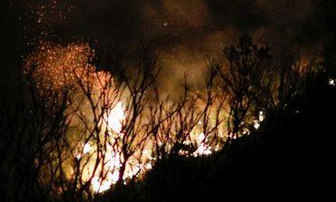 Ερημίτης Κέρκυρας: Πάνω από 200 στρέμματα δάσους κάηκαν από τη φωτιά