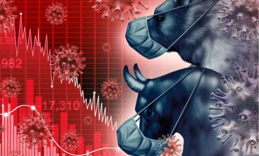 Το χρηματιστηριακό παράδοξο της πανδημίας