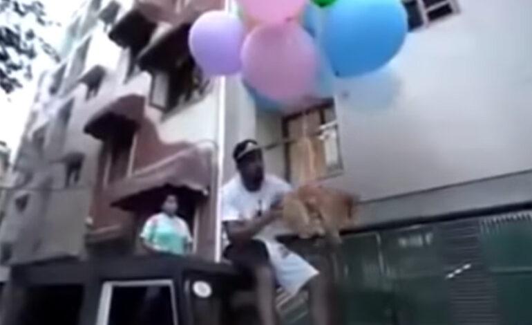 Οργή για YouTuber που έδεσε μπαλόνια στον σκύλο του για να πετάξει