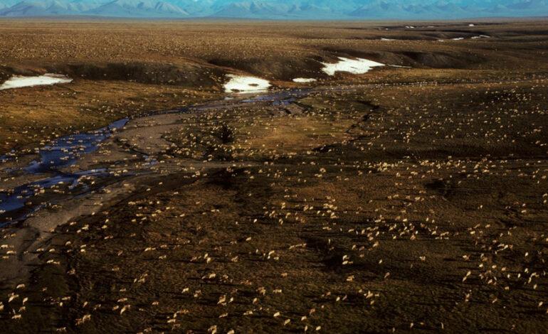 Η κυβέρνηση Μπάιντεν μπλοκάρει τις γεωτρήσεις στην Αλάσκα