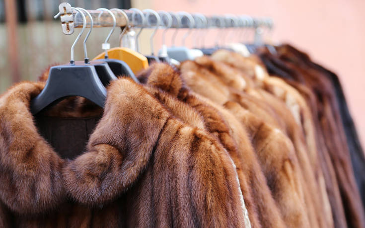 Ισραήλ: Η πρώτη χώρα που απαγορεύει το εμπόριο γούνας ζώων για τη μόδα