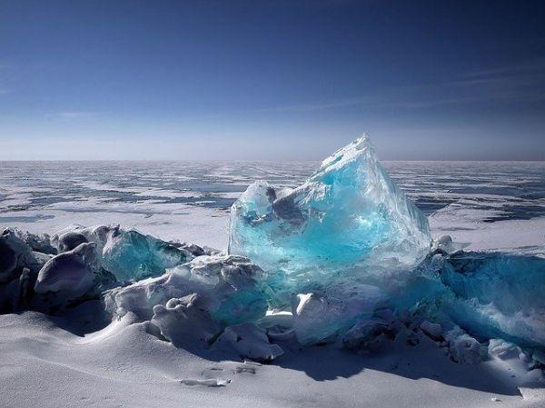 Σιβηρία: Μικροσκοπικό ζώο «αναστήθηκε» μετά από 24.000 χρόνια – Τι αναφέρουν οι επιστήμονες